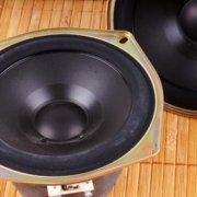 Lautsprecher Magnet