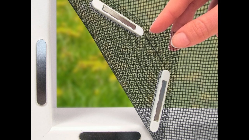 Insect screen with magnets